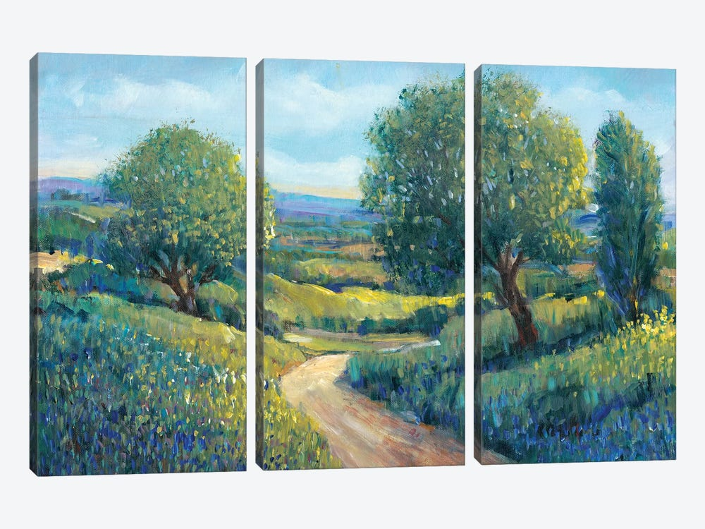 Country Sentrees II by Tim O'Toole 3-piece Canvas Print