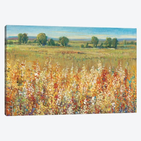 Gold and Red Field I Canvas Print #TOT135} by Tim OToole Canvas Artwork
