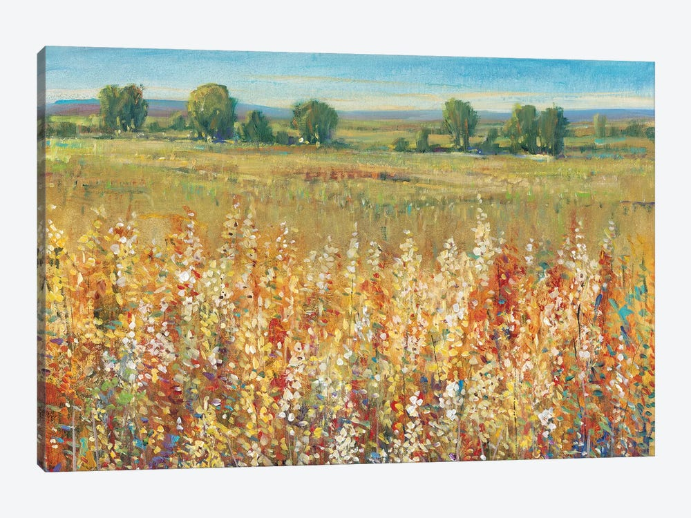 Gold and Red Field I by Tim O'Toole 1-piece Canvas Wall Art