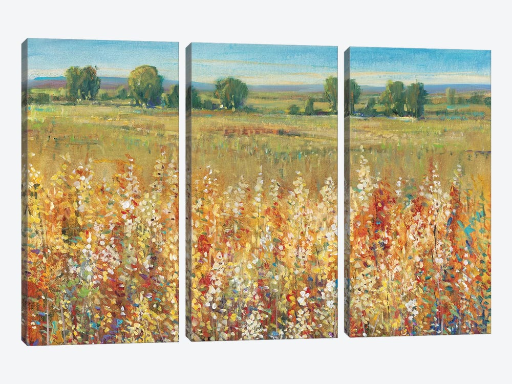 Gold and Red Field I by Tim O'Toole 3-piece Canvas Art