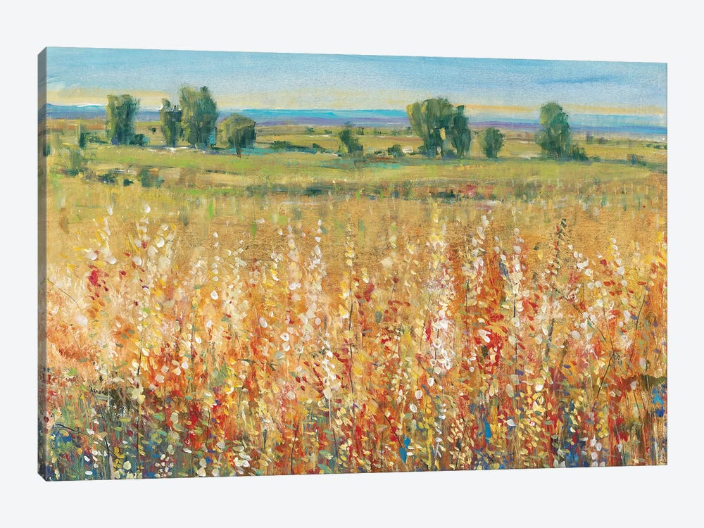 Gold and Red Field II by Tim OToole 1-piece Art Print