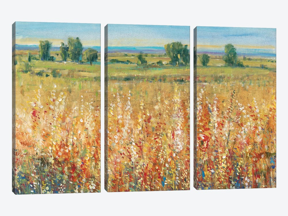 Gold and Red Field II by Tim OToole 3-piece Canvas Print
