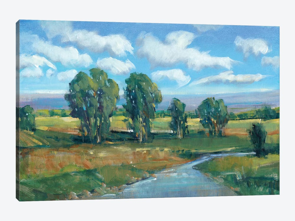 Lazy River Day I by Tim OToole 1-piece Canvas Art