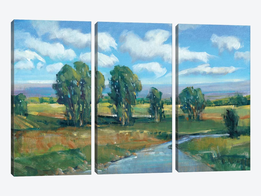 Lazy River Day I by Tim OToole 3-piece Canvas Wall Art