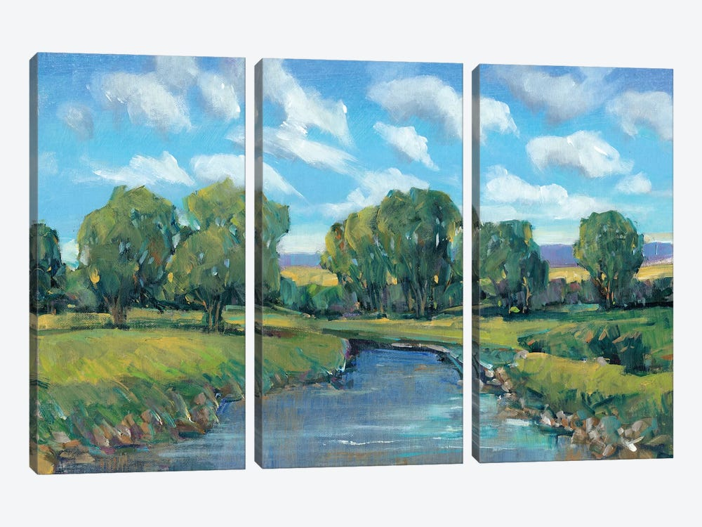 Lazy River Day II by Tim OToole 3-piece Canvas Art