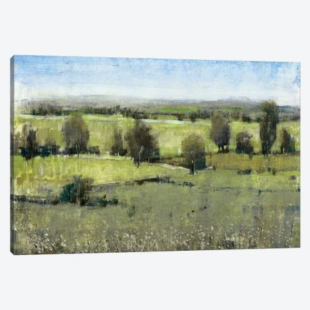 Morning Horizon I Canvas Print #TOT141} by Tim O'Toole Canvas Wall Art