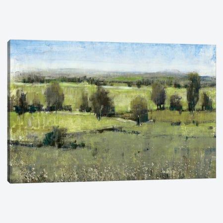 Morning Horizon I Canvas Print #TOT141} by Tim OToole Canvas Wall Art