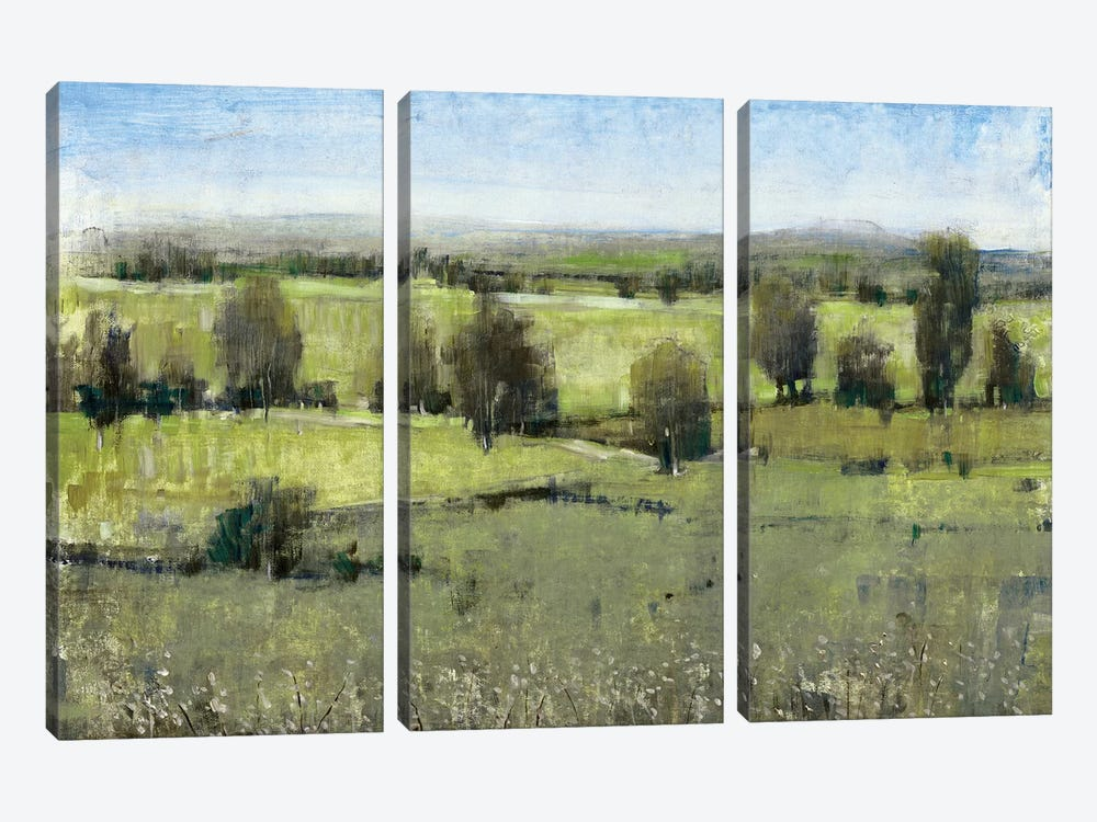 Morning Horizon I by Tim OToole 3-piece Art Print