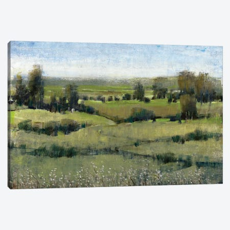 Morning Horizon II Canvas Print #TOT142} by Tim O'Toole Canvas Art