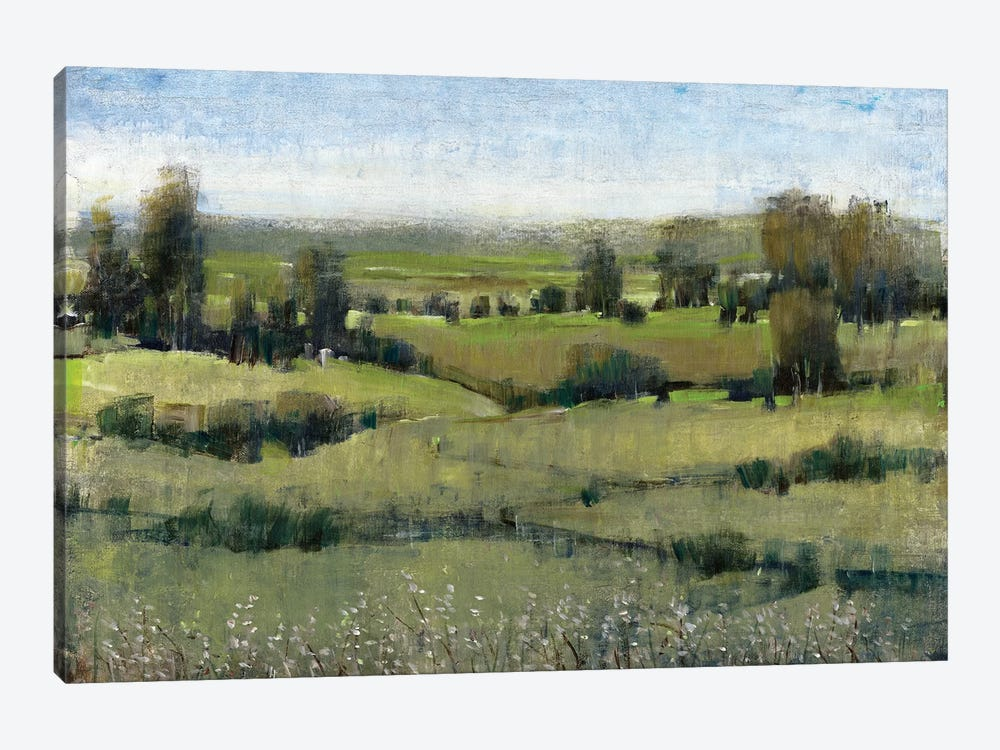 Morning Horizon II by Tim OToole 1-piece Canvas Wall Art