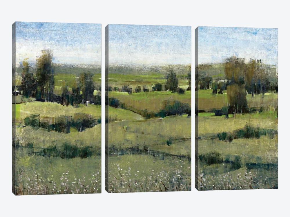 Morning Horizon II by Tim OToole 3-piece Canvas Wall Art