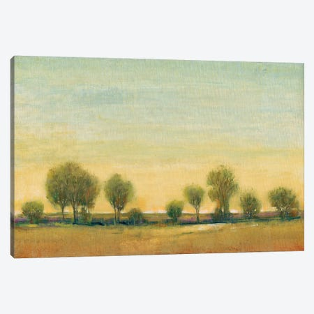 Morning Sun I Canvas Print #TOT143} by Tim OToole Canvas Art