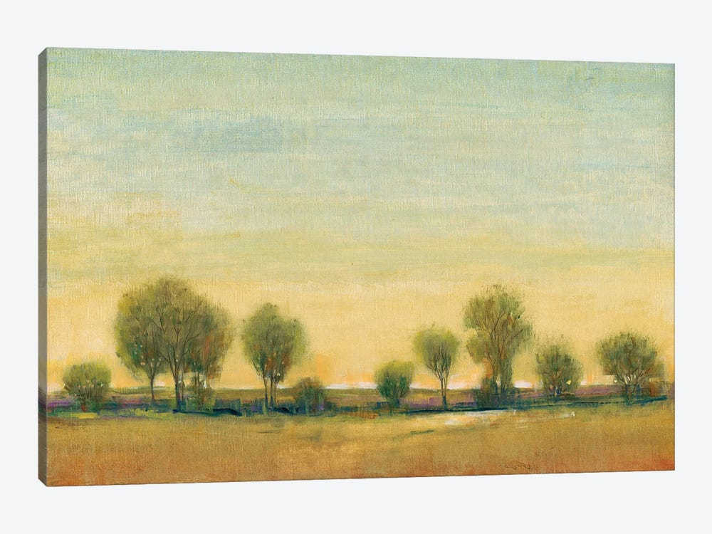Morning Sun I by Tim O'Toole 1-piece Canvas Print