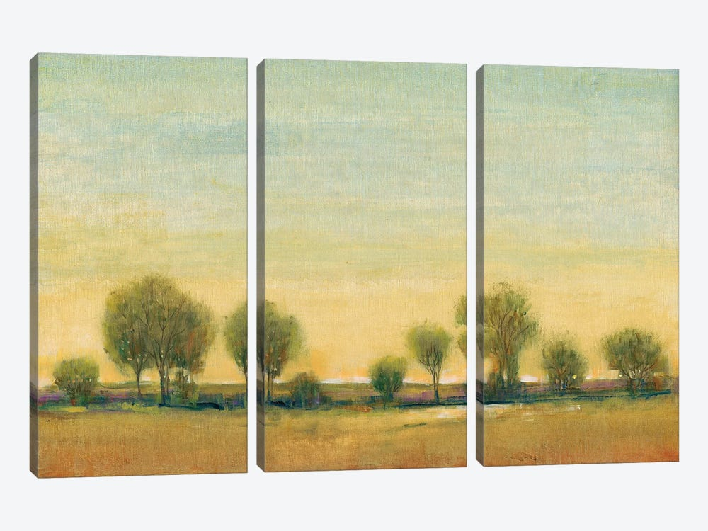 Morning Sun I by Tim O'Toole 3-piece Canvas Print
