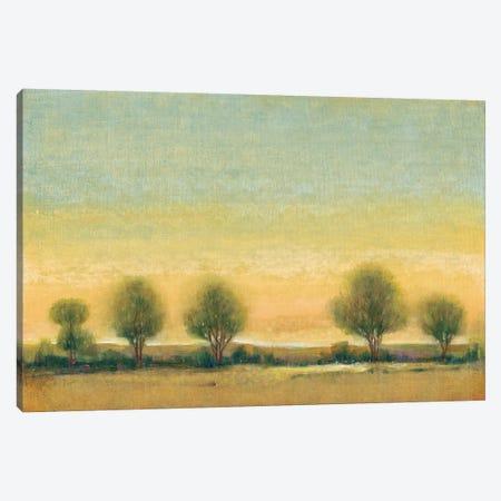 Morning Sun II Canvas Print #TOT144} by Tim OToole Canvas Art Print