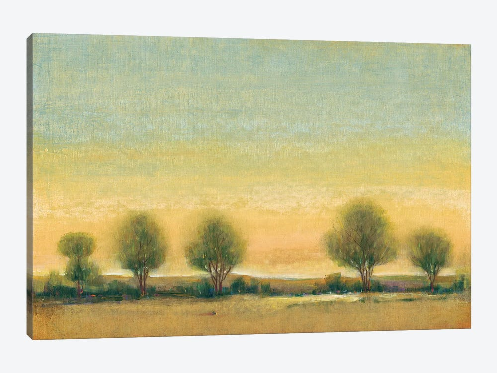 Morning Sun II by Tim O'Toole 1-piece Canvas Artwork