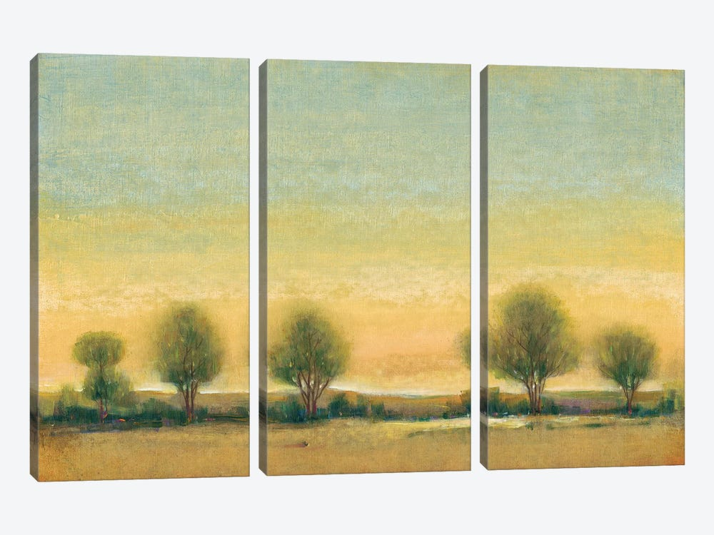 Morning Sun II by Tim O'Toole 3-piece Canvas Art