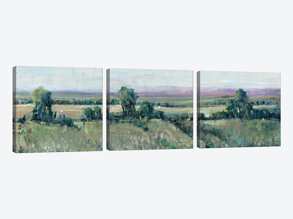 Off the Road II by Tim O'Toole 3-piece Canvas Print