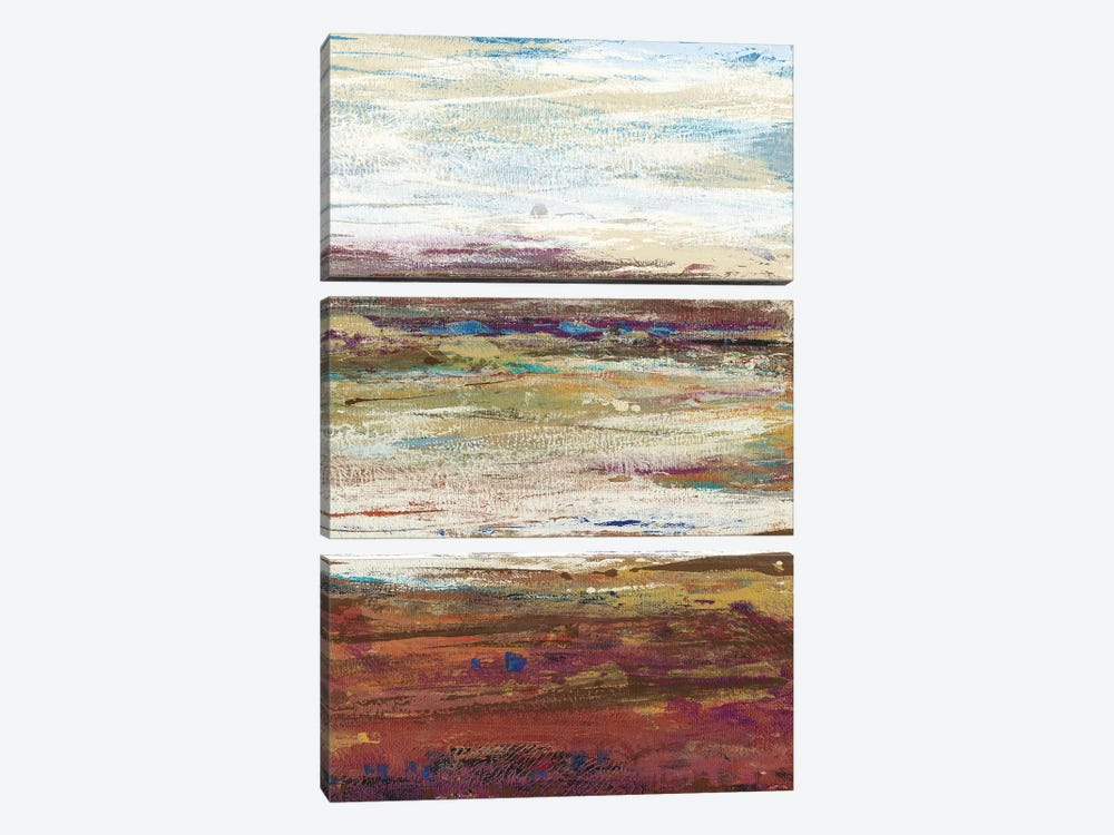 Plum Vista III by Tim O'Toole 3-piece Canvas Wall Art