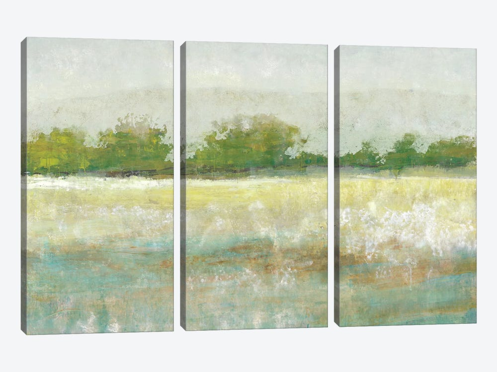 Spring Treeline II by Tim OToole 3-piece Canvas Artwork