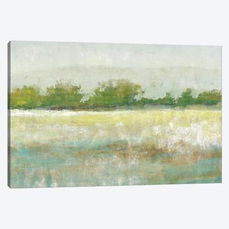 Spring Treeline II Canvas Print #TOT155} by Tim OToole Canvas Art