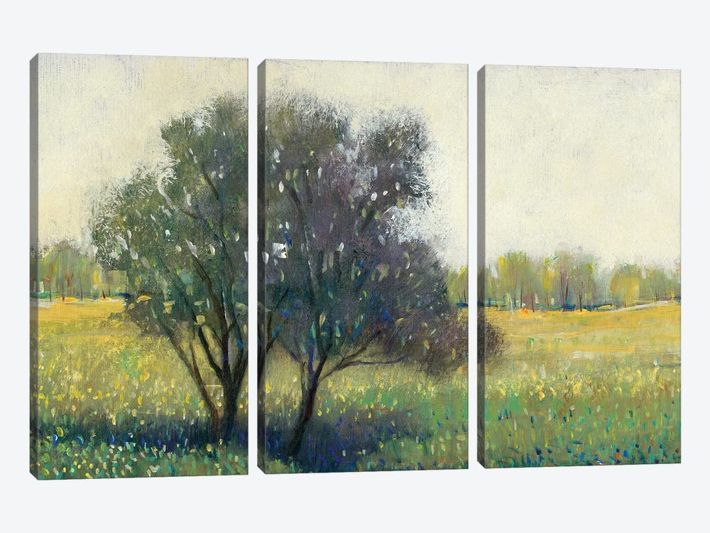 Standing Alone I by Tim OToole 3-piece Canvas Art Print