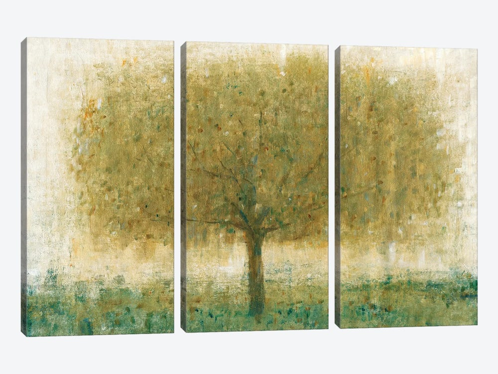Summer Day Tree I by Tim OToole 3-piece Art Print