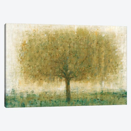 Summer Day Tree I Canvas Print #TOT158} by Tim OToole Canvas Art Print