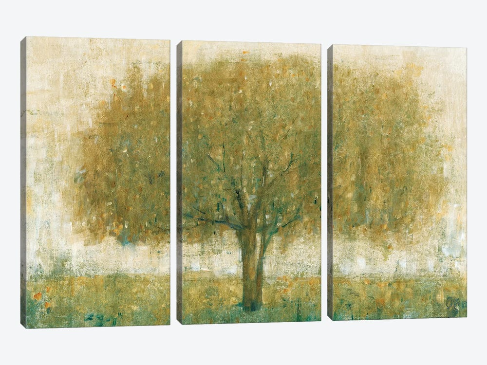 Summer Day Tree II by Tim O'Toole 3-piece Canvas Wall Art