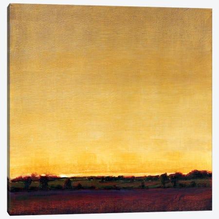 Radiant Sky II Canvas Print #TOT15} by Tim OToole Canvas Print