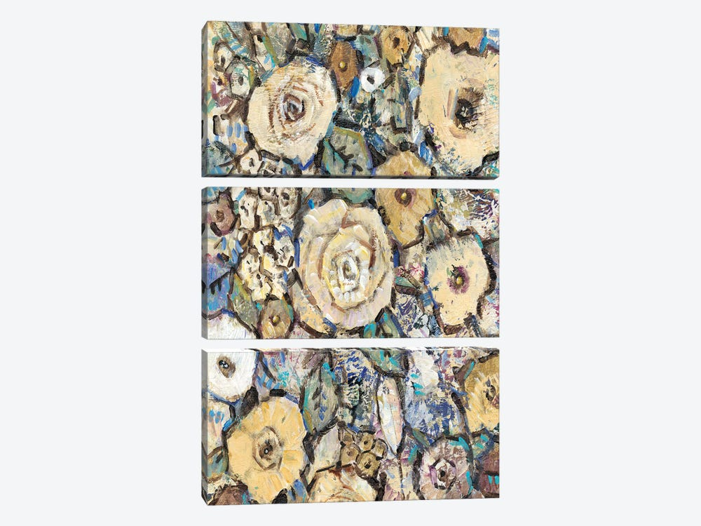 Decorative Flowers I by Tim O'Toole 3-piece Canvas Wall Art