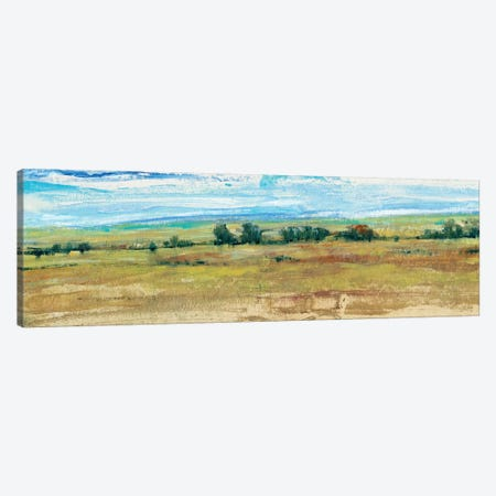 Distant Treeline Panel I Canvas Print #TOT164} by Tim OToole Canvas Art Print