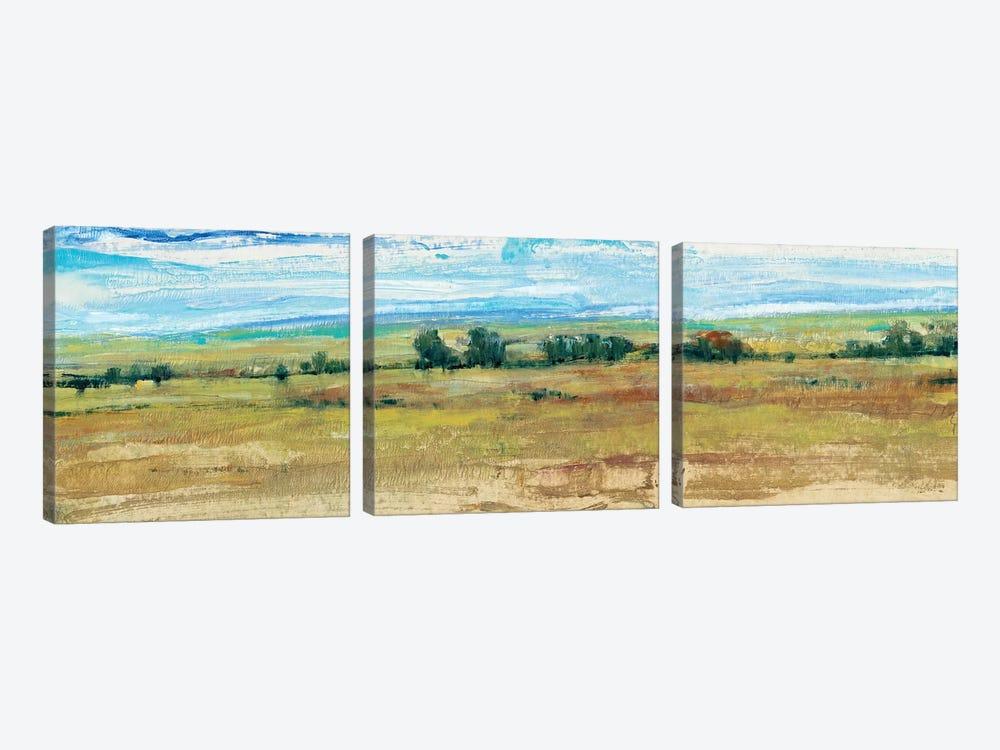 Distant Treeline Panel I by Tim OToole 3-piece Canvas Art