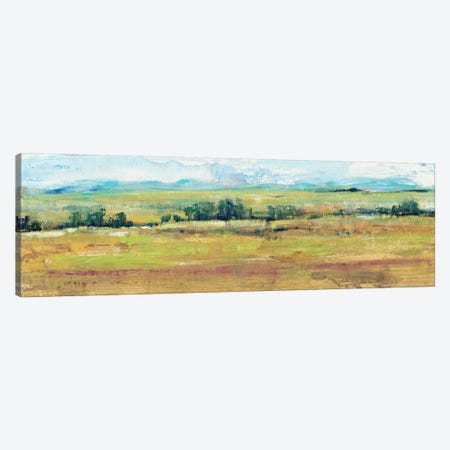 Distant Treeline Panel II Canvas Print #TOT165} by Tim OToole Canvas Art Print