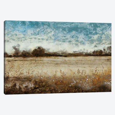 Infinite Pasture Canvas Print #TOT166} by Tim OToole Canvas Art Print