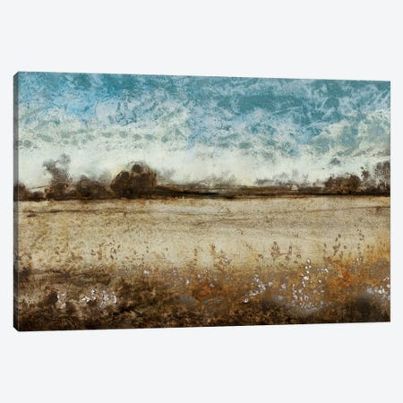 Infinite Pasture Canvas Print #TOT166} by Tim OToole Canvas Art Print