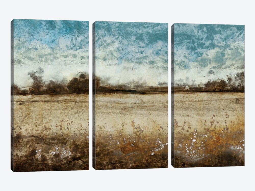Infinite Pasture by Tim O'Toole 3-piece Canvas Wall Art