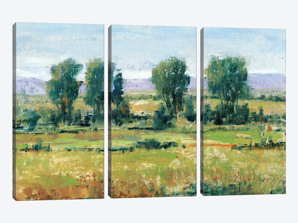 Nearly Noon I by Tim OToole 3-piece Canvas Art Print