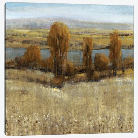 River Valley I Canvas Print #TOT169} by Tim OToole Canvas Artwork