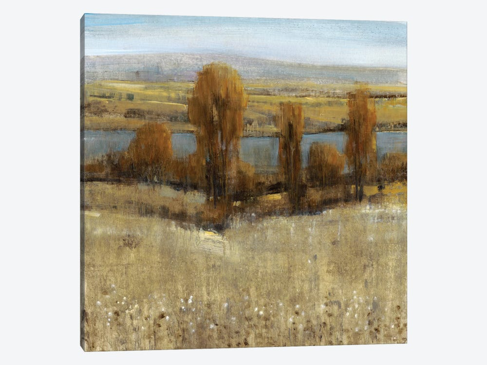 River Valley I by Tim OToole 1-piece Canvas Print