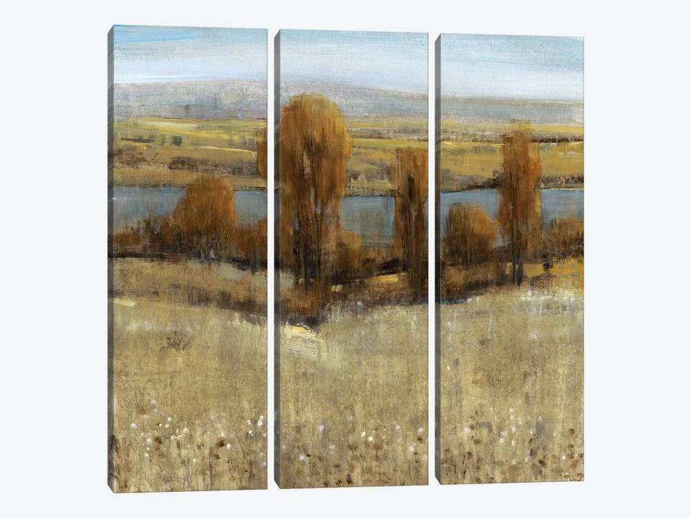 River Valley I by Tim OToole 3-piece Art Print