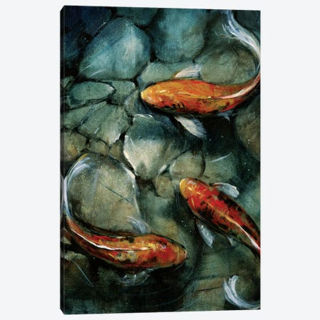 Tres Koi I Canvas Print #TOT16} by Tim O'Toole Canvas Print