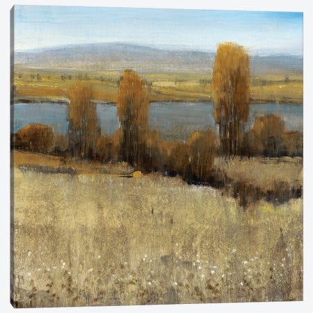 River Valley II Canvas Print #TOT170} by Tim OToole Canvas Print