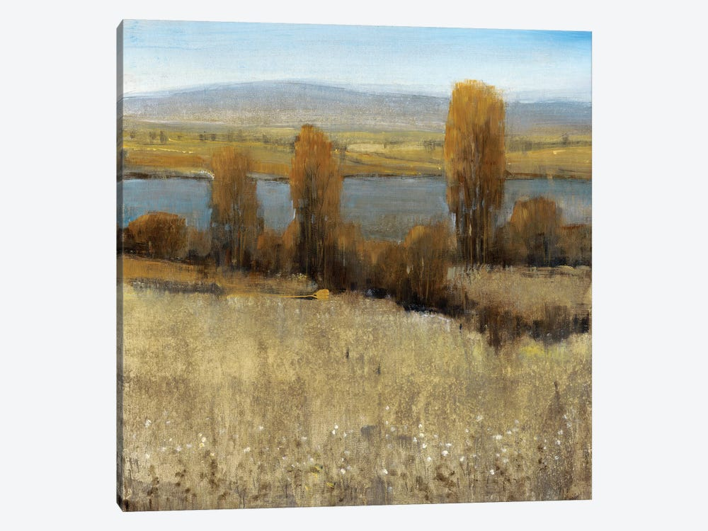 River Valley II by Tim O'Toole 1-piece Art Print