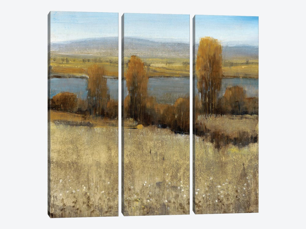 River Valley II by Tim O'Toole 3-piece Canvas Art Print