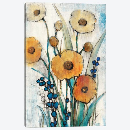 Spring Joy I Canvas Print #TOT171} by Tim OToole Canvas Art Print