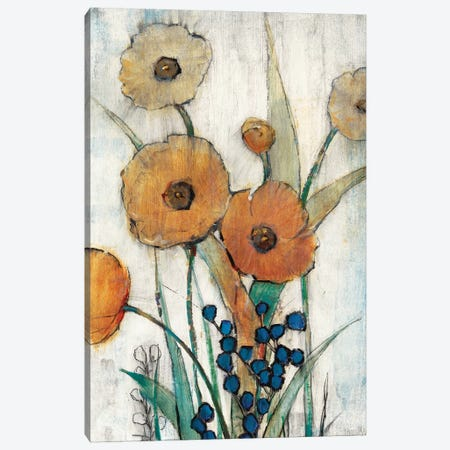 Spring Joy II Canvas Print #TOT172} by Tim OToole Canvas Print