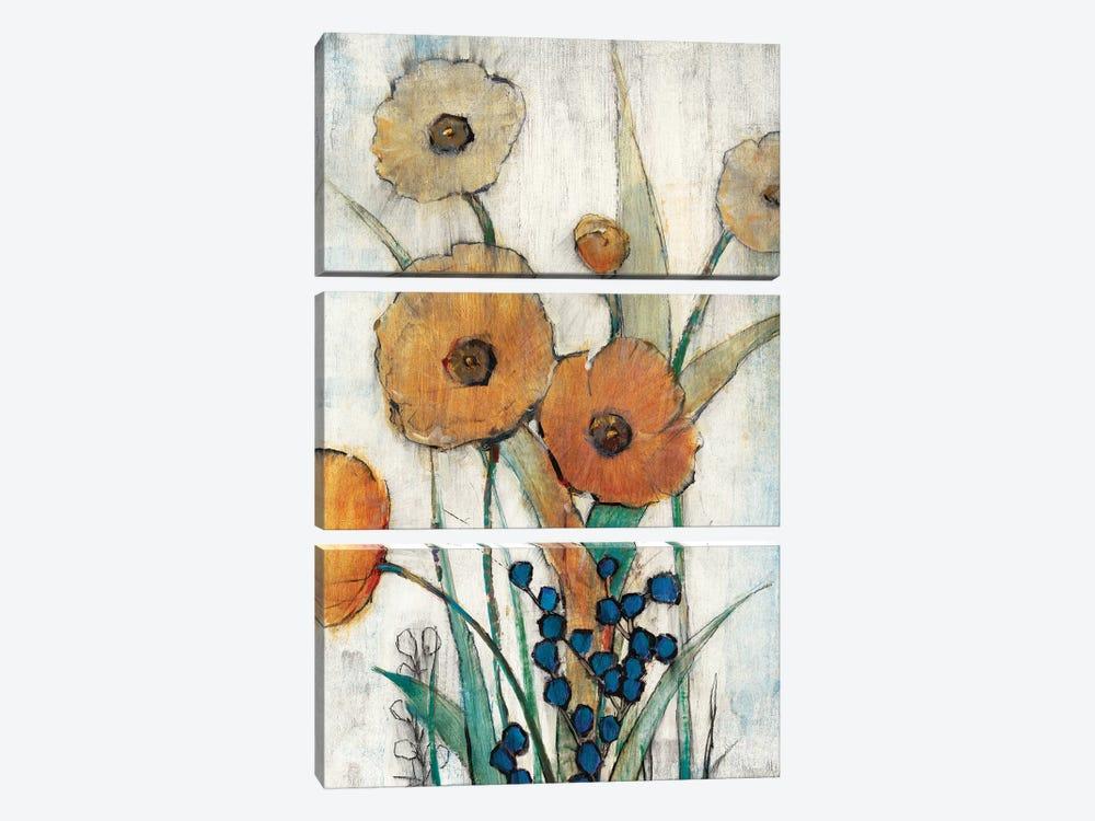 Spring Joy II by Tim OToole 3-piece Art Print