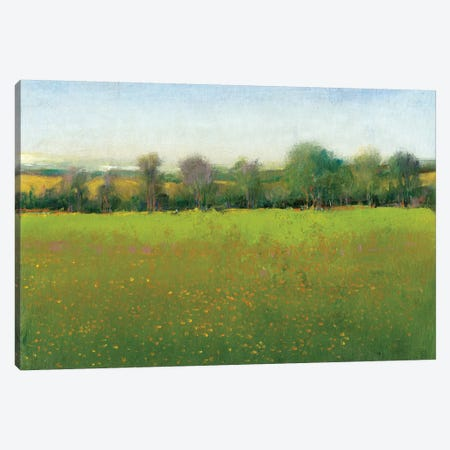 Verdant Countryside I Canvas Print #TOT175} by Tim OToole Canvas Artwork