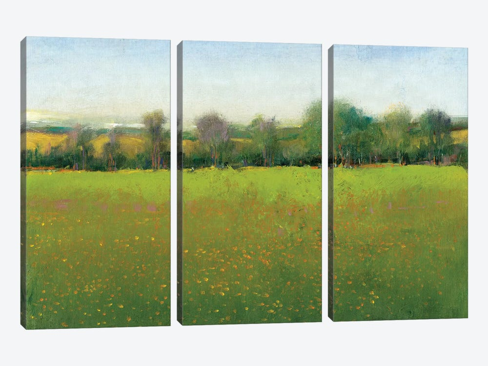 Verdant Countryside I by Tim O'Toole 3-piece Canvas Art
